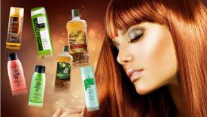 szampony-300x170 Pielęgnacja Włosów