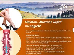 slaviton-300x225 Seria Ałtai